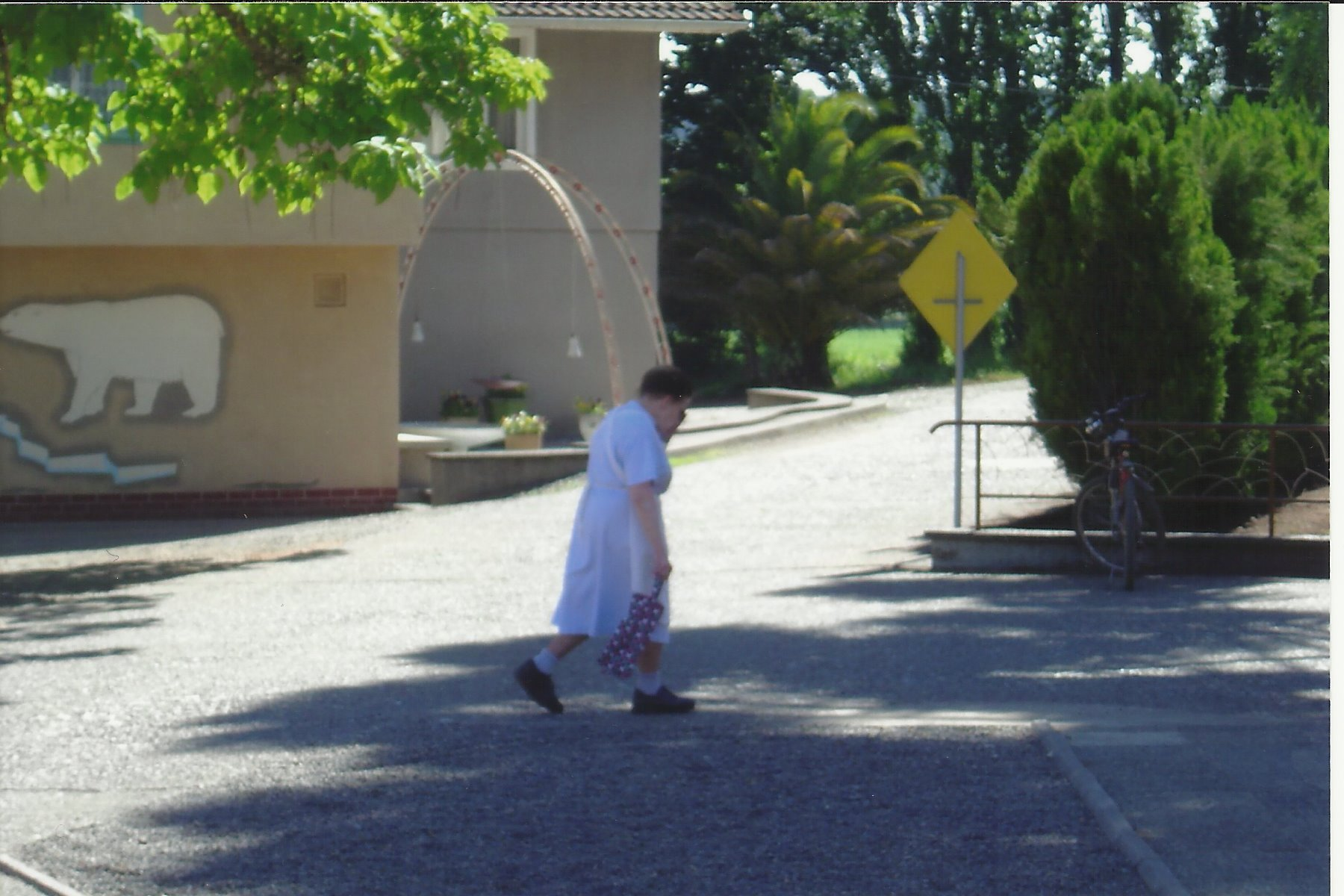 An elderly woman past by in the residential area.
